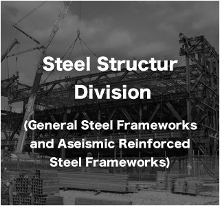 Steel Structure Division